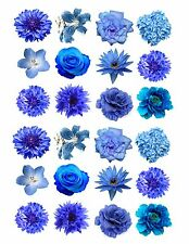 24 icing fairy cake toppers decorations edible Mixed blue Flowers ND1