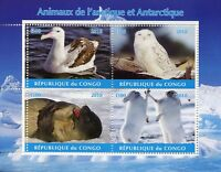 Congo 2018 MNH Arctic & Antarctic Animals 4v M/S II Owls Seals Birds Stamps