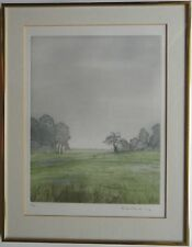 Fritz Mecking/Farbradierung/Landschaft VI/ 75 Exe. um 1980/ mit Rahmen