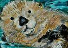 ORIGINAL ACEO PAINTING SEA OTTER with Clam Weasel Animal Nature Kasheta ATC ART