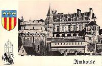 BR52437 Amboise le chateau        France