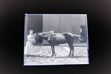 Antique 5x4 Inch Plate Glass Negative Of A Woman With Her Horse Outside Barn V31