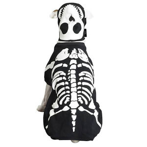 Casual Canine Glow Bones Dog Halloween Costume glow in the dark XS-XL  Black Pet