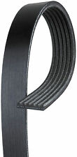 Serpentine Belt-Micro-V AT Premium OE V-Ribbed Belt Gates K060947 Green Stripe