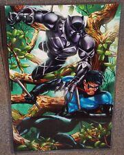 Black Panther vs Nightwing Glossy Art Print 11 x 17 In Hard Plastic Sleeve