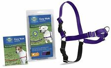 PetSafe Dog Nylon EASY WALK HARNESS Reduce Pulling Medium Purple/Black