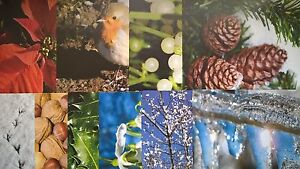 Nature themed patterned paper ~ A4 size ~ Cards, Scrapbooking, Wall art