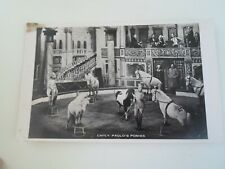 Emily Paulo's Ponies - Vintage Nostalgic Real Photo CIRCUS Postcard  §E957