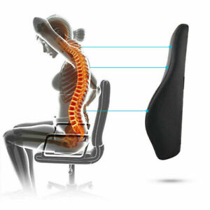 Harley Memory Foam Filling Lumbar Cushion Sofa Chair Car Seat Back Pain Support