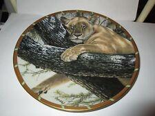 Lenox Guy Coheleach's Royal Cats Plate Collection Cat Nap No Box