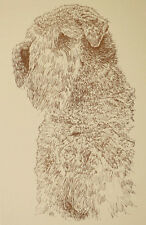 Soft Coated Wheaten Terrier Dog Art Kline adds your dogs name free. Great Gift