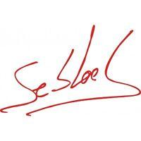 2 stickers autocollant SIGNATURE sebastien loeb decal rallye course auto sponsor