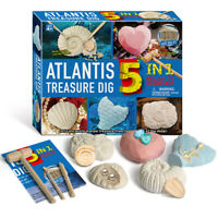 Kids DIY Gemstone Shell Excavation Dig Up Kit Education Archaeological Toy Relia