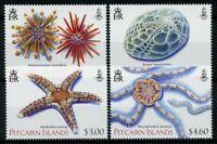 Pitcairn Islands 2019 MNH Echinoderms Starfish Sea Urchins 4v Set Marine Stamps
