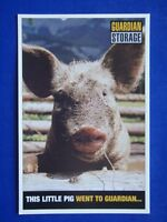 THIS LITTLE PIG WENT TO GUARDIAN... - GUARDIAN STORAGE - ADVERT POSTCARD