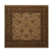 """8'2"""" x 8' Superfine Hand Knotted 100% Wool Square Agra Oriental Area Rug Camel"""