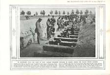 1915 German Pows Dig Graves Col Di Lana Tolmino