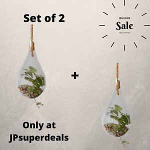 Set of 2 Tempered Glass Terrarium - Hanging Teardrop on Rope, Perfect Gift