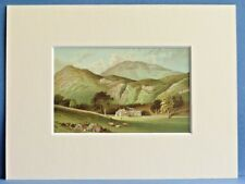 BEN LOMOND FROM ROWARDENNAN SUPERB QUALITY MOUNTED ANTIQUE CHROMO PRINT c1890
