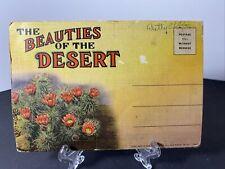 VINTAGE-POSTCARD FOLDER-THE BEAUTIES OF THE DESERT
