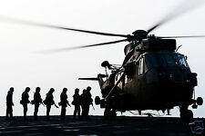 Royal Marines 40 Company 40 Commando Sea King Helicopter 12x8 Inch Reprint Photo