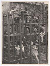 PHOTO ANCIENNE Cour de Maternelle École Écolier Élève Jeux Jeu Cage à poules