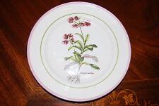 """Wonderful Primula Italian Hand Decorated Botanical Plate """"Chimapila Umbellata"""""""