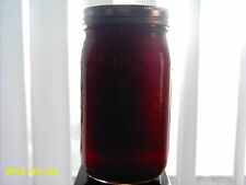 2 gallons 100% pure natural unheated wildflower honey nutritional, ships free
