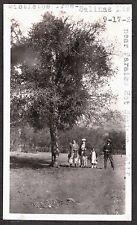 VINTAGE 1924 PARAISO HOT SPRINGS CALIFORNIA MISTLETOE TREE SALINAS MTS OLD PHOTO