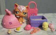 Authentic 2007 Lps Hasbro Littlest Pet Shop #551 Angora Cat Green Diamond Eyes