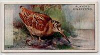 Woodcock  Gamebird c90  Y/O Ad Trade Card