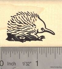 Short-beaked Echidna Rubber Stamp E14308 WM