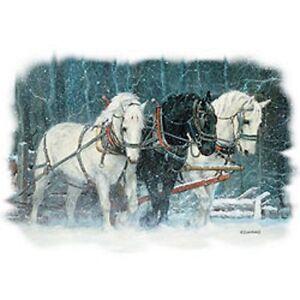 Snowfall Horses  Tshirt   Sizes/Colors