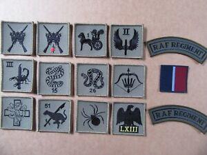 RAF Regiment. Squadron  MTP Green, TRF ID Patches & Shoulder Titles,   new.