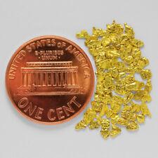 1.0541 Gram Alaska Natural Gold Nuggets --- (#64657-14) - Alaskan Gold Nuggets