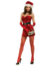 Secret Wishes Christmas Collection Sexy Miss 5th Avenue Santa Costume Medium