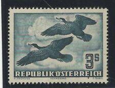 AUSTRIA  1950-1953 MNG ROOKS BIRDS
