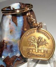 Alcoholics Anonymous Aa Recovery Bronze Keychain Medallion Cottonwood Token Coin
