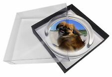 Pekingese Dog Glass Paperweight in Gift Box Christmas Present, AD-PE90PW