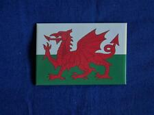 WELSH DRAGON FLAG FRIDGE MAGNET