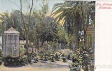 * CANARY - Las Palmas - Alameda