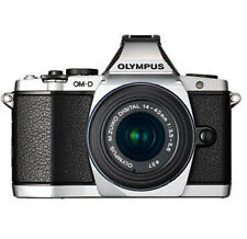 Silver Digital Cameras with Interchangeable Lenses