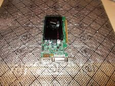 PNY GeForce GT 520 1GB Low Profile DVI PCI-E Video Card + HDMI VCGGT5201XPB-CG