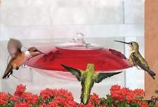 Bird Feeder -Droll Yankees Window  Hummingbird Feeder