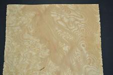 Ash Burl Raw Wood Veneer Sheet 85 X 19 Inches 142nd G7868 7