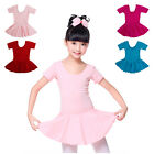 Kid Girl Flutter Ruffle Gymnastics Dance Toddler Ballet Leotard Skirt Tutu