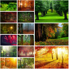 Forest Scenery Trees Background Cloth Photography Backdrop Prints Decor