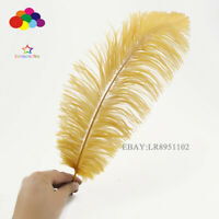 wholesale 50pcs High quality natural Gold selection ostrich feathers 8-10 inch