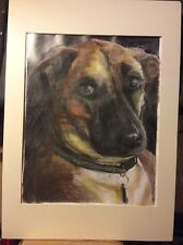 PET PORTRAITS Drawings And Oil painting