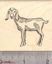 Nubian Goat Rubber Stamp J3920 WM
